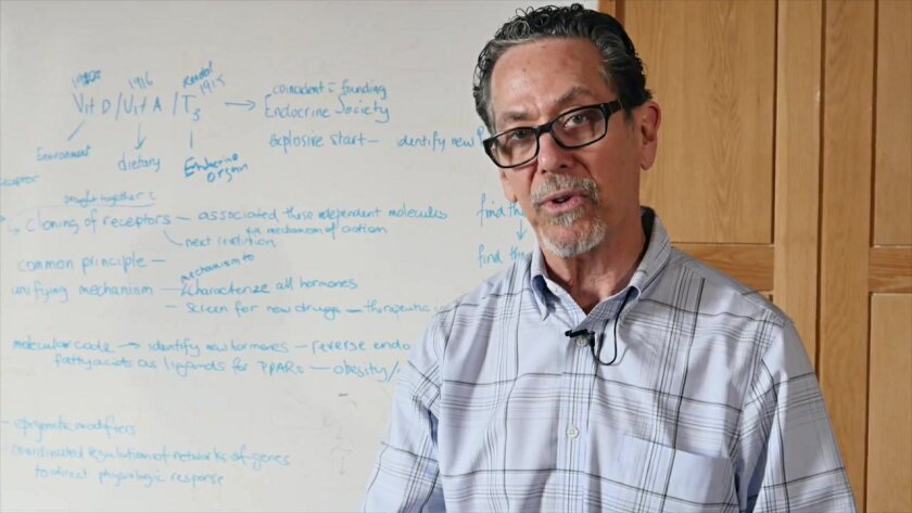 The Salk Institute's Ron Evans explains how immune cell dysfunction can lead to diabetes.