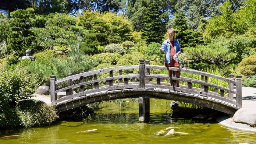 The author's daughter makes friends with Hakone Estate and Gardens koi pond residents while feeding