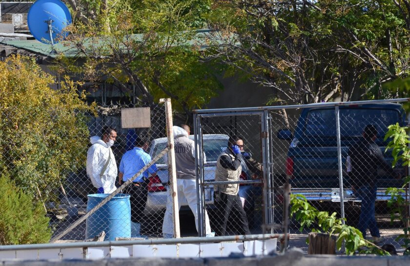 Forensic experts investigate at a house in which eight people were stabbed to death in the Mexican city of Juarez.