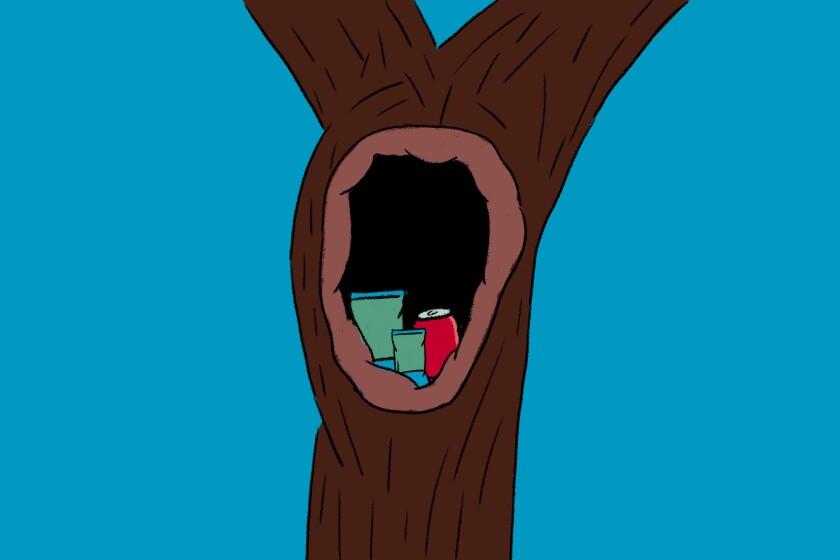 Supplies hidden inside a hollow tree for hikers.