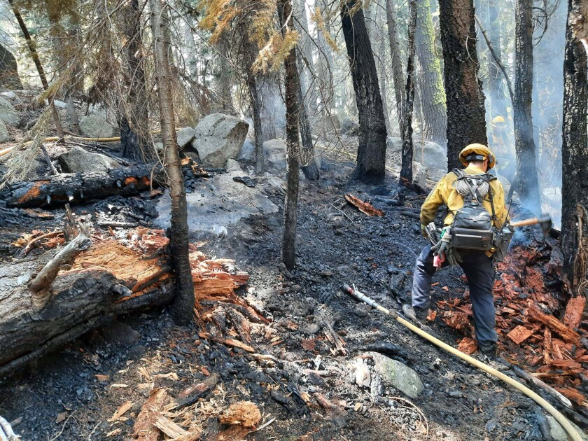 A firefighter puts out hot spots on a suspected arson fire near South Lake Tahoe.