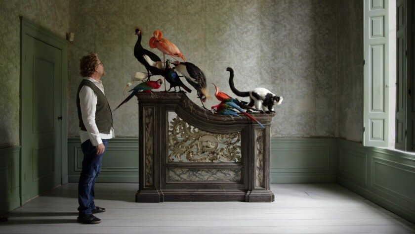Ferry van Tongeren admires his taxidermy in the documentary 'Stuffed.'