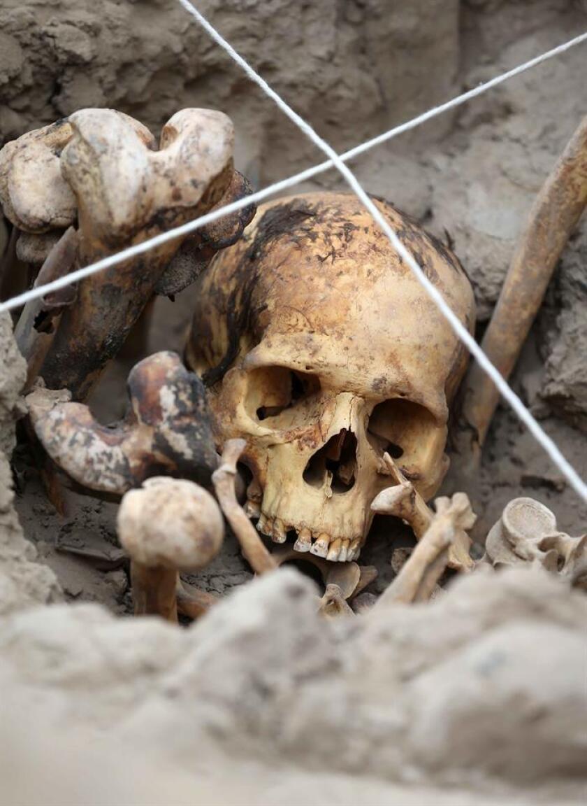 Un grupo de científicos en una universidad del Reino Unido logró determinar el sexo de restos humanos incinerados en Italia entre los siglos XII y VI antes de Cristo, a través de un examen de los rasgos de sus fragmentos óseos. EFE/Archivo