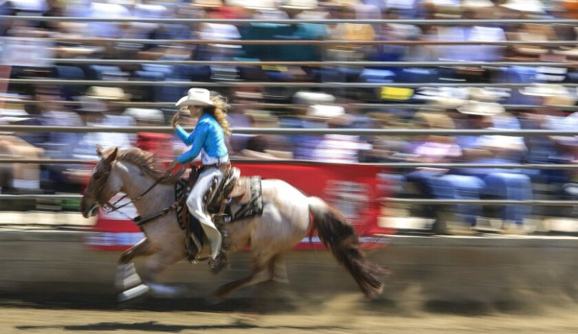 A rider at the Lakeside Rodeo
