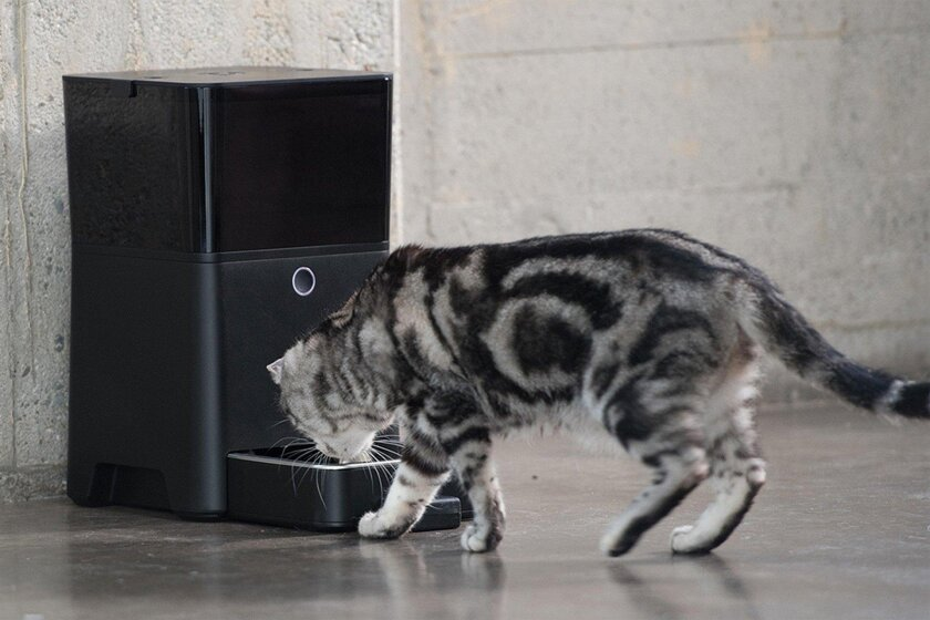 Petnet makes smart, personalized feeding devices to help prevent obesity in dogs and cats. Petco, a San Diego pet retailer, participated in a $10 million funding round for Petnet