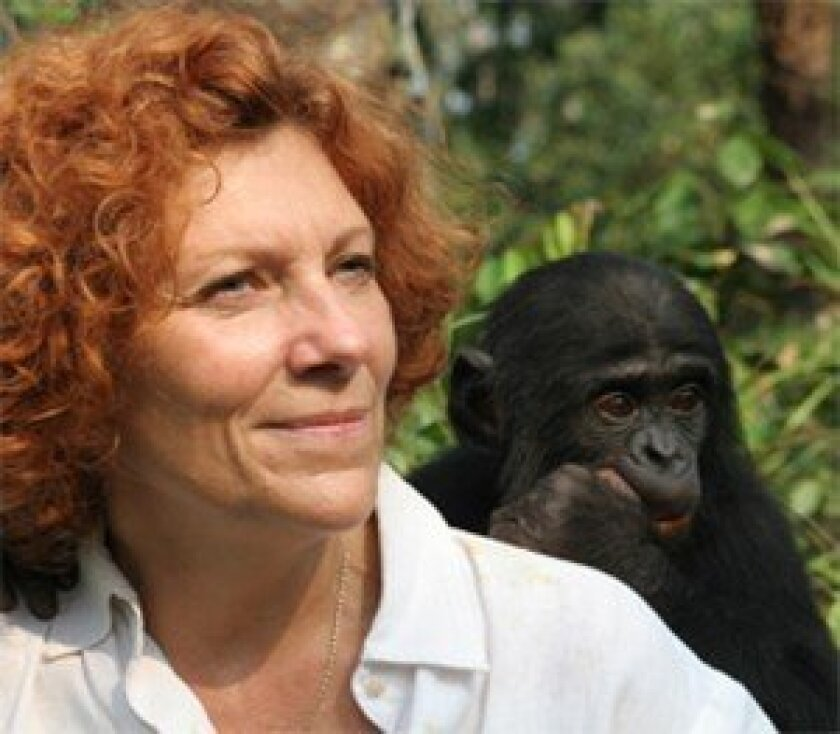 Claudine André with a bonobo. Courtesy photo