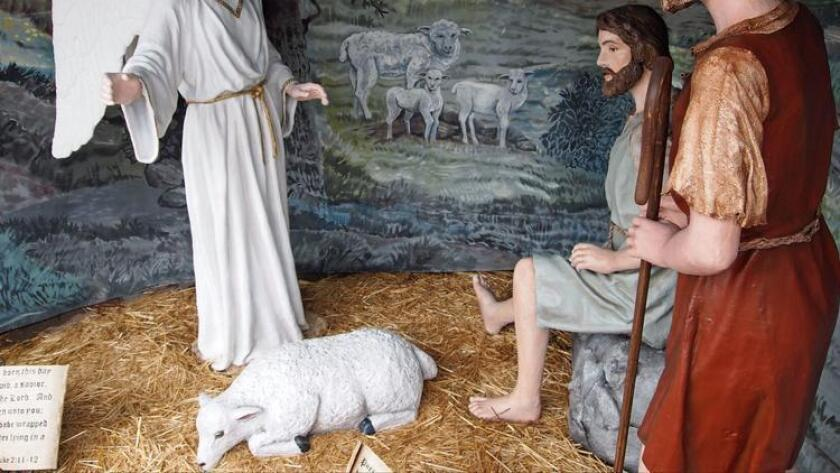 One of the two sheep figures that were taken from the Nativity scenes at Balboa Park's Organ Pavilion.