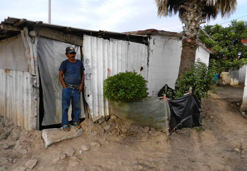 Farmworker Ramiro Castillo stands in front of his living quarters near Villa Juarez in Mexico's Sinaloa state. Half the tomatoes eaten in the U.S. this time of year come from Sinaloa.