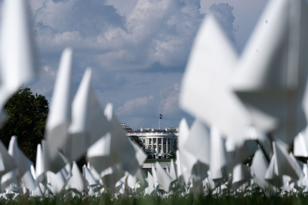Rows of small white flags, with the White House in the far background