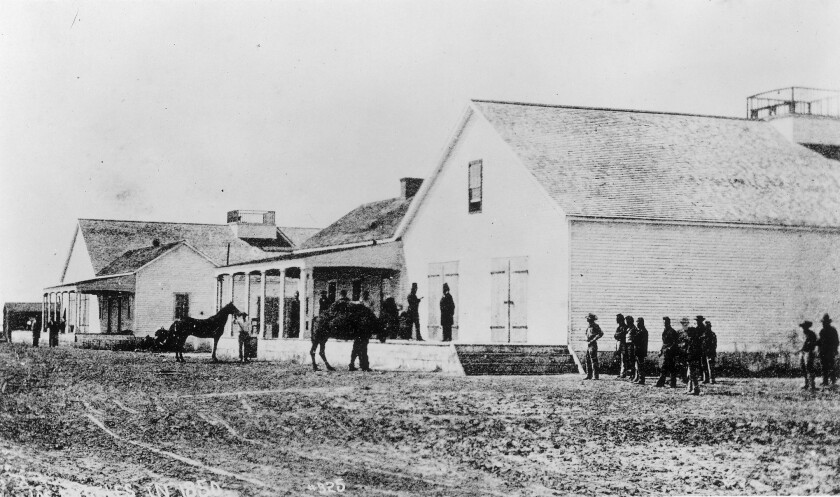 Historical image shows a camel in Wilmington in the 1800s.