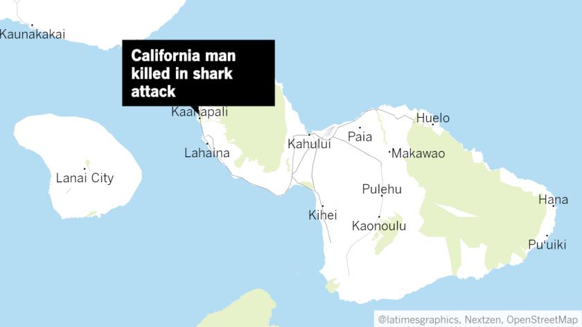 California man, 65, killed in shark attack off Maui - Los