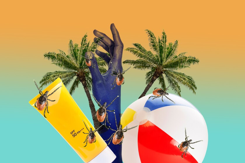 An illustration of ticks superimposed over a beach ball and sunscreen