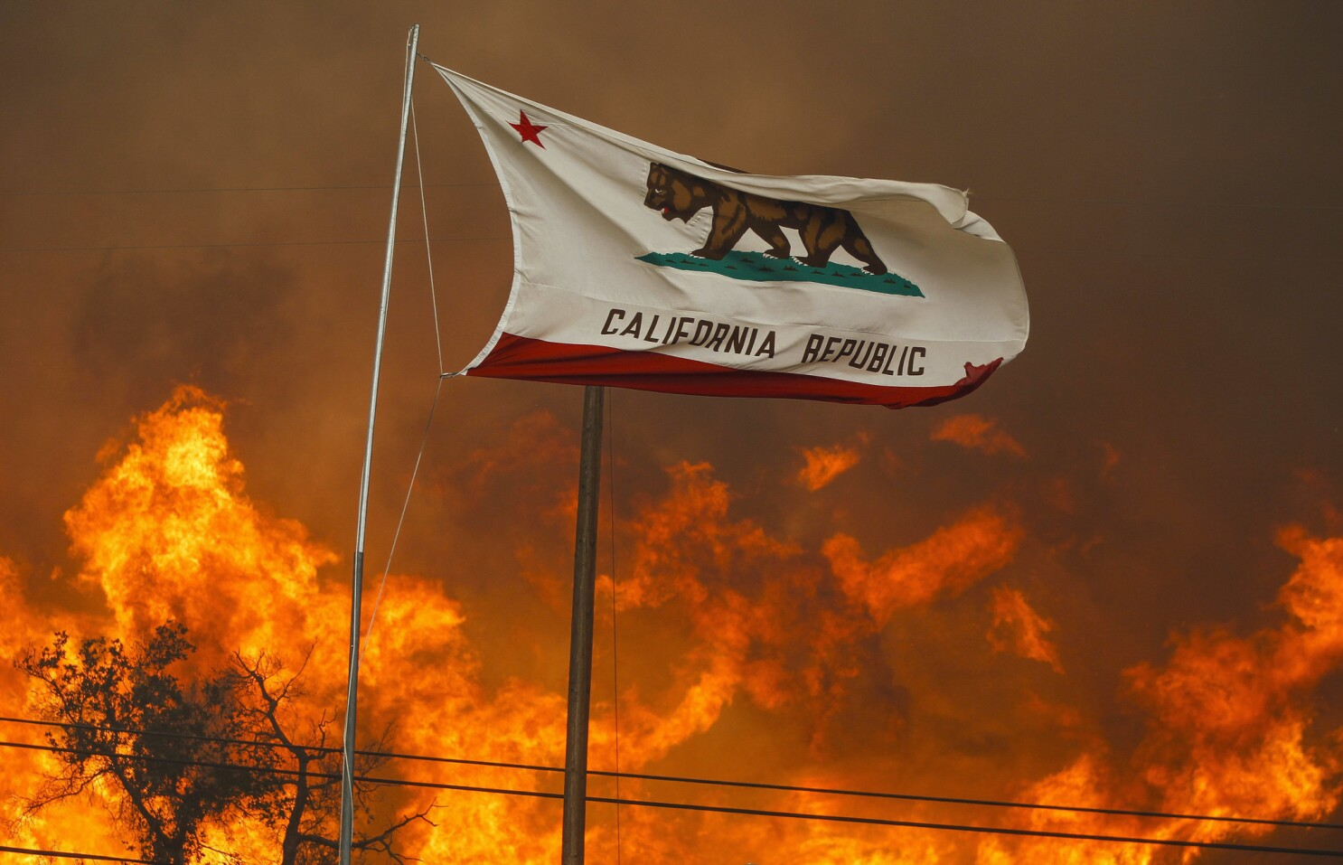 As the Santa Ana winds touch down this fall, wildfire season may begin to shift to winter in San Diego