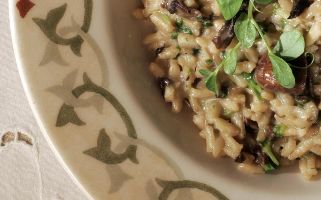 Risotto with mushrooms and pea sprouts