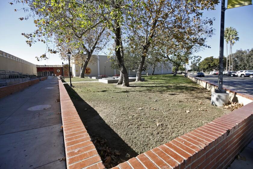 The Estancia High School senior lawn, Nov. 18, 2020.