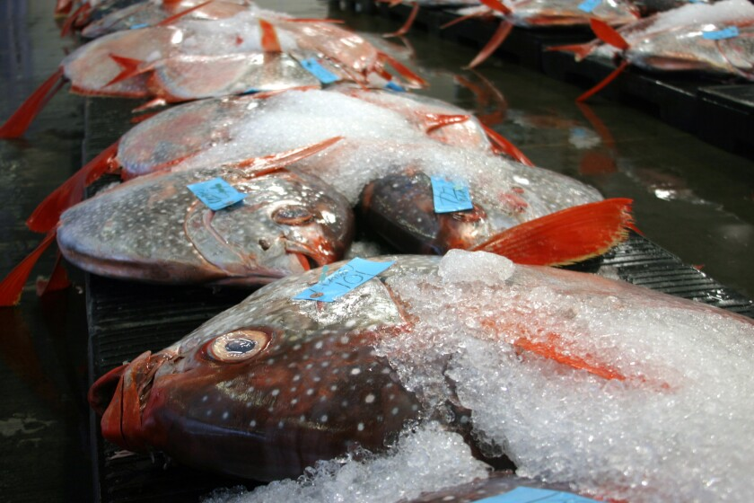 Opah, a deep-ocean species also called moonfish, is offered for sale at a local fish market