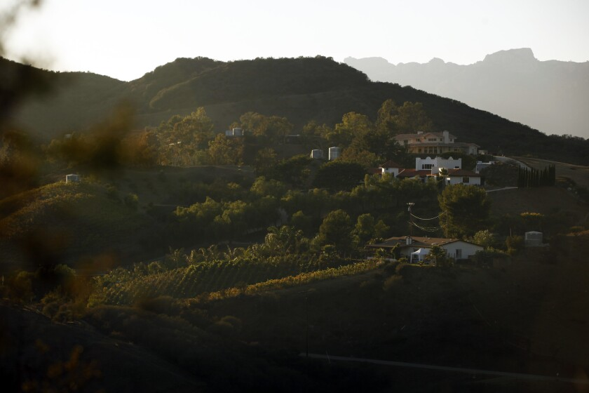 Vineyards can be seen in Malibu at the crest of the Santa Monica Mountains. L.A. County supervisors voted Tuesday to approve a plan that will allow the continued creation of new vineyards in the northern portion of the mountains with stricter regulations.