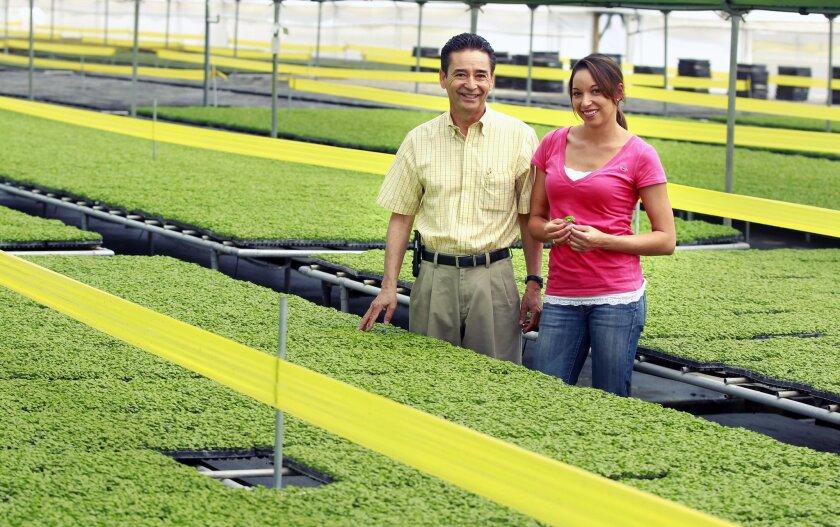 David Sasuga and his daughter Kelly at their Fresh Origins farm in San Marcos.