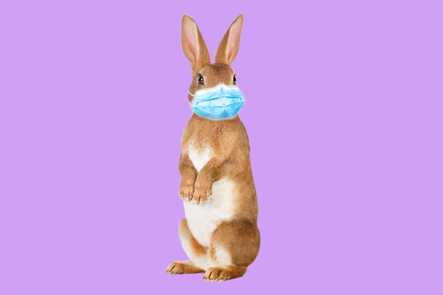 How To Celebrate Easter During Coronavirus Quarantine Los