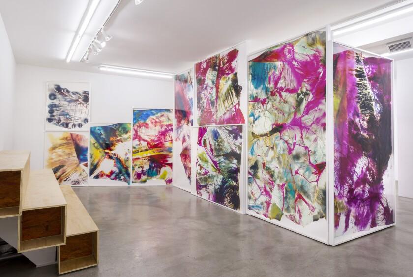 """""""Photography Lovers' Peninsula,"""" installation at M+B by Mariah Robertson"""