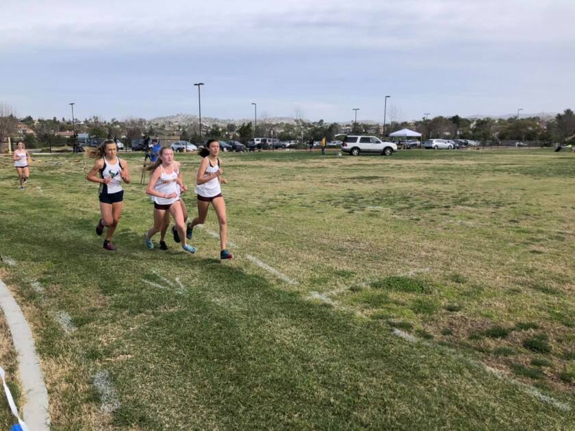 Torrey Pines and La Costa Canyon's cross country