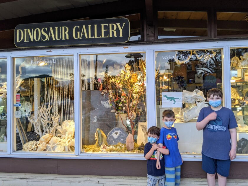 Liam Wrona, right, visits his favorite store Dinosaur Gallery with his brothers.