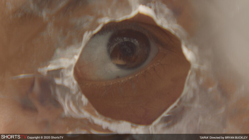 """In a scene from """"Saria,"""" a brown eye can be seen through a raggedy hole in semi-transparent material."""