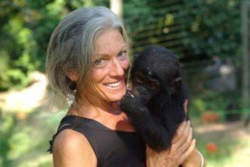 Debbie Sandler with a bonobo.