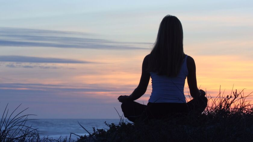 Mice can't sit with their legs crossed, staring at a sunset. But they can get some of the benefits of meditation, a new study shows.