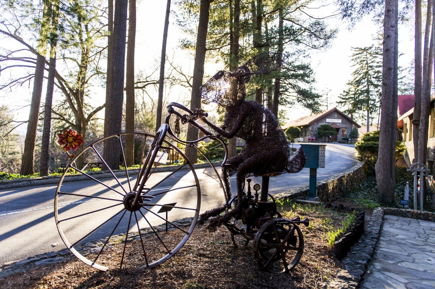 "A mixed media sculpture by Josh Cote, titled, ""Clockwork High Wheel Hare"" is on display outside the Grovewood Gallery."