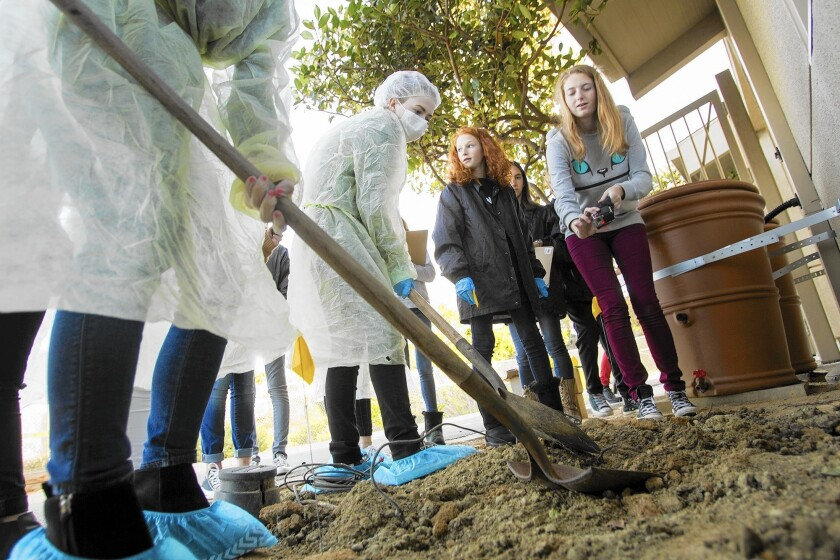 Thurston Middle School Forensics Team members work on digging up a grave site during a forensics mock trial project on Monday.
