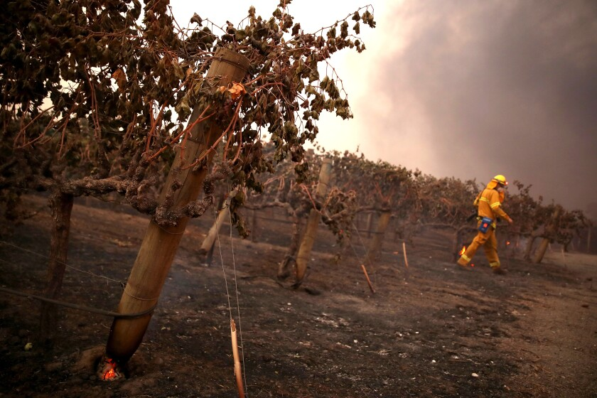 Evacuations Issued For Parts of Sonoma County As Kincade Fire Spreads