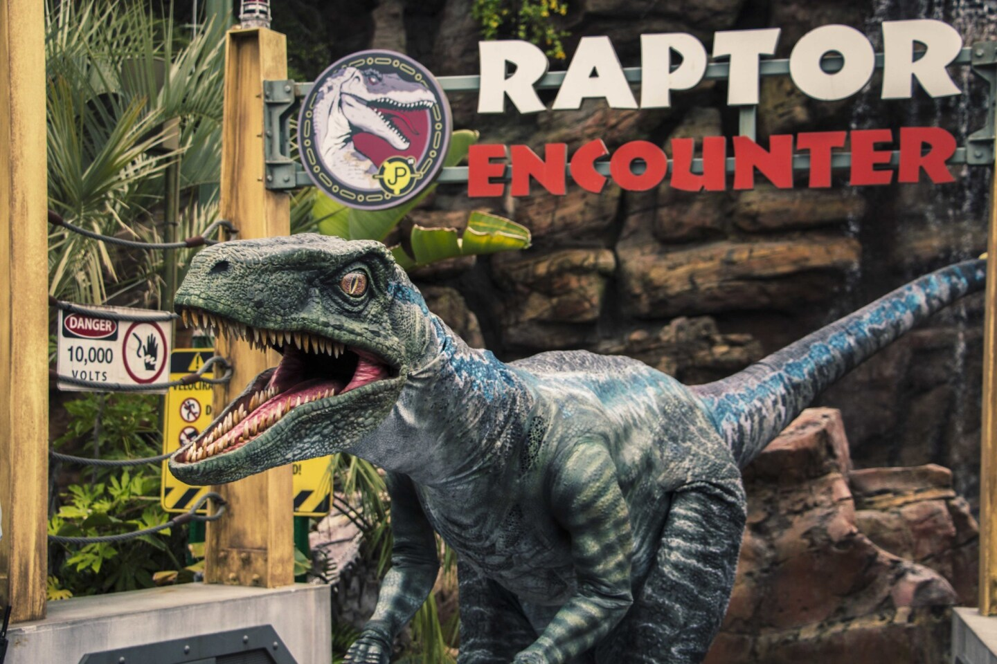"""Blue, the Velociraptor from Universal Pictures and Amblin Entertainment's Jurassic World Franchise, debuts at Universal Studios Hollywood and Universal Orlando Resort as part of the """"Raptor Encounter"""" experience."""