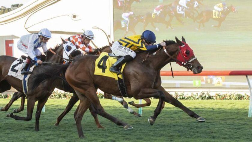#4 RISKY PROPOSITION (Joseph Talamo) $75,000 Let It Ride Stakes Owner: Acker, Becker, Wafer, Jr., et