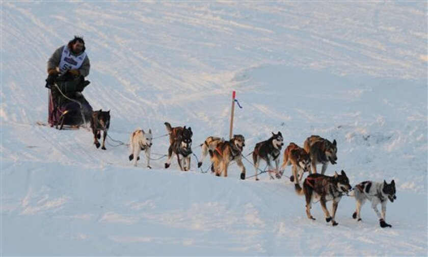 Cim Smyth drives his dog team up the sea wall in Nome, Alaska, during the finish of the Iditarod Trail Sled Dog Race on Wednesday morning, March 13, 2013. (AP Photo/The Anchorage Daily News, Bill Roth)