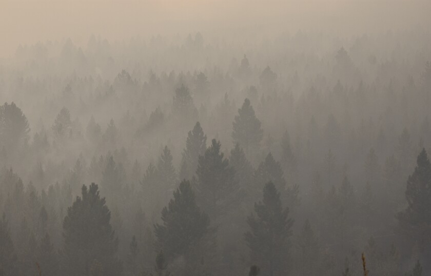 FILE - In this Aug. 11, 2021 file photo smoke from a wildfire obscures a stand of trees on the Northern Cheyenne Indian Reservation, near Ashland, Mont. In southeastern Montana, communities in and around the Northern Cheyenne Indian Reservation were ordered to evacuate as the Richard Spring Fire grew amid erratic winds. (AP Photo/Matthew Brown,File)