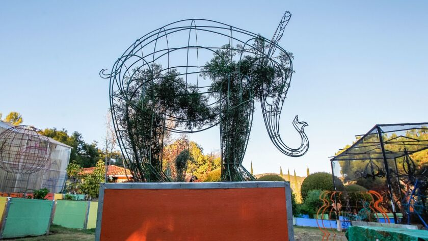 A topiary elephant by Jennifer Coburn is in the early stages of being filled in by a growing plant.