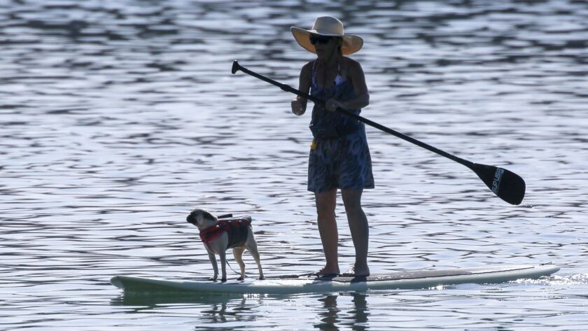 A paddle boarder and pug cruise around Dana Point Harbor on a hot day in 2017. Heat records were shattered throughout Southern California on Monday, thanks to a high-pressure system.