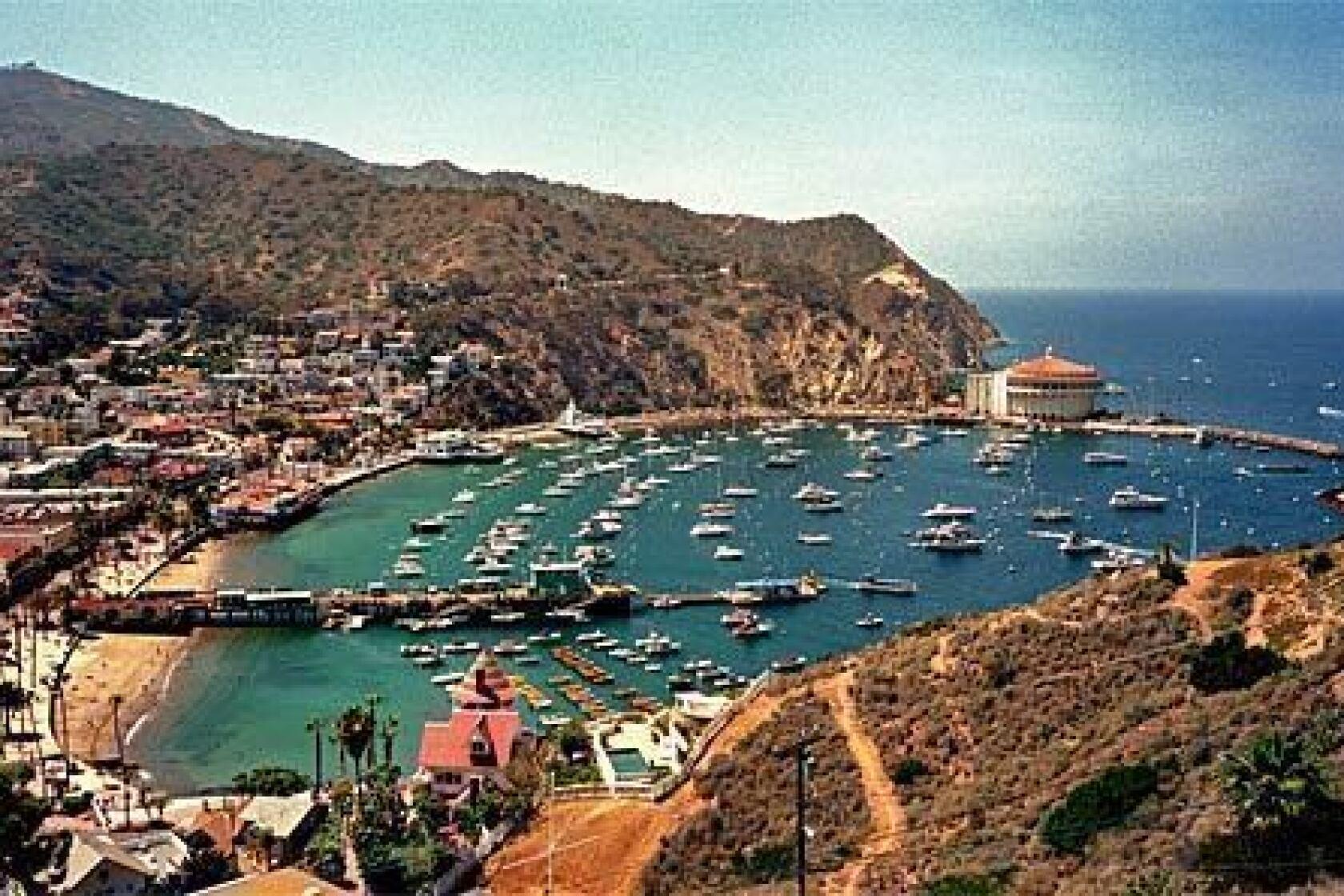Santa Catalina Island Avalon California United States Travel Poster Print