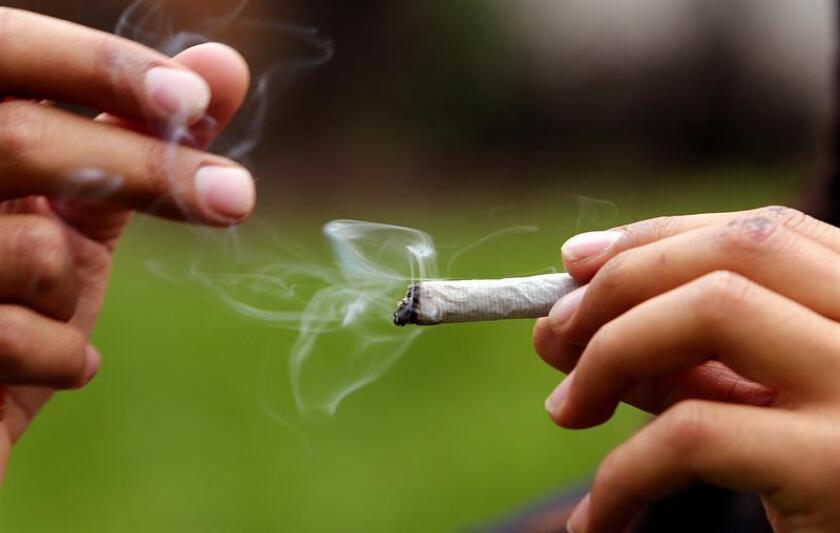 Vista de una persona con un cigarrillo de marihuana. EFE/Archivo