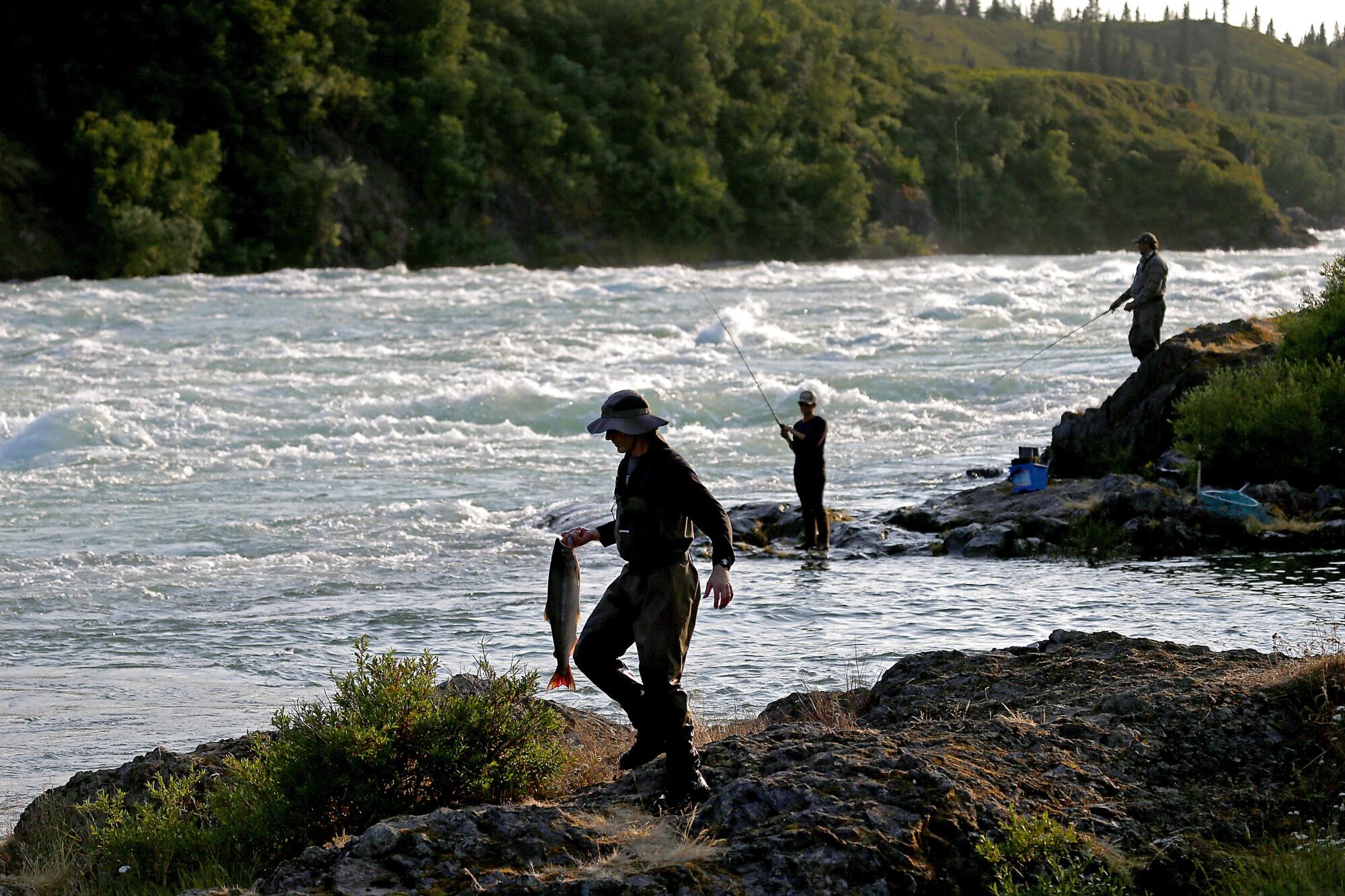 Fishing for sockeye salmon in the Newhalen River near Iliamna, Alaska.