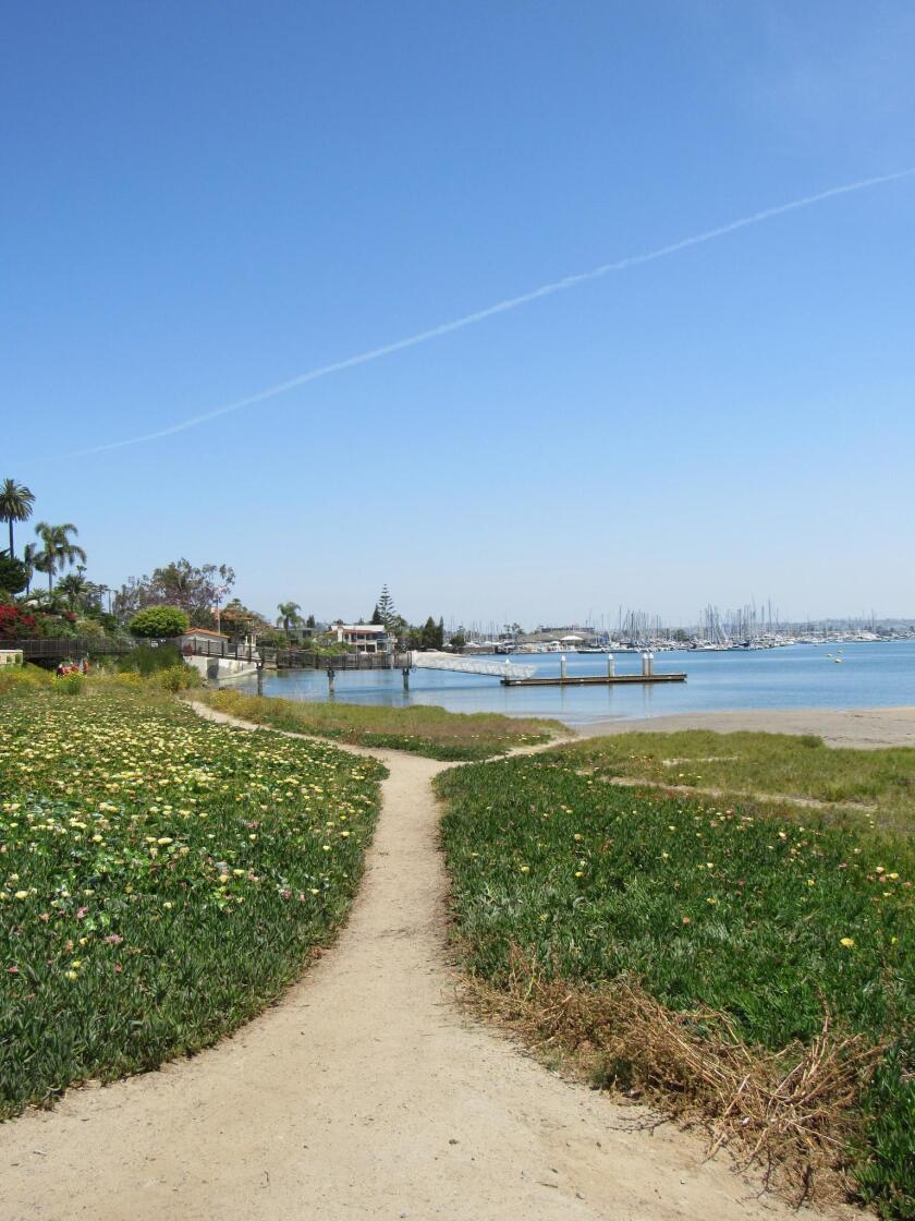 THE LONG AND WINDING ROAD ... La Playa Bayside Trail refers to the dirt path that meanders along the bay from Talbot Street to Qualtrough Street in Point Loma.