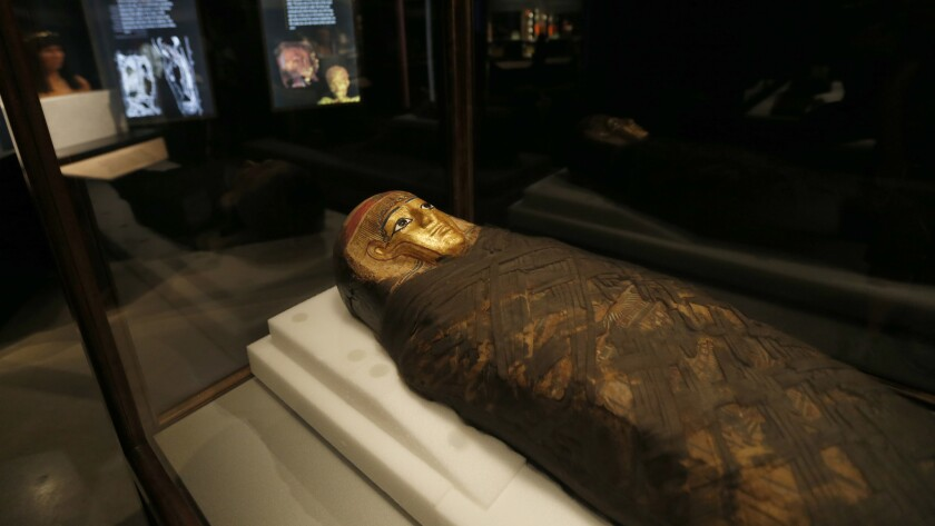 Unwrapping the mummies