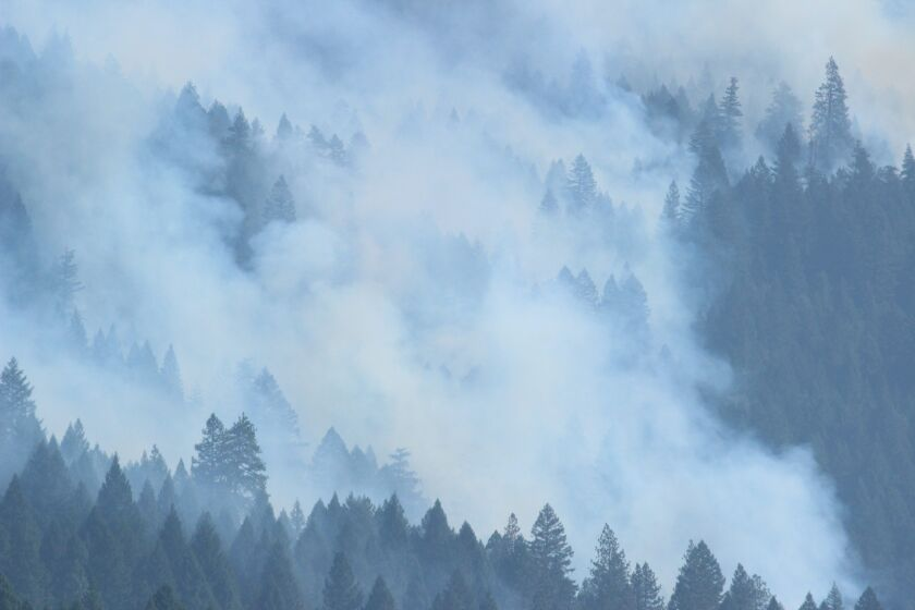 Smoke hovers over the forest amid the August Complex fire on Sept. 22.