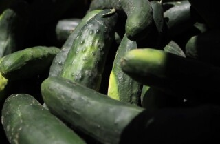 Market Fresh: Cucumbers