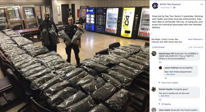 NYPD seizes marijuana-like plants