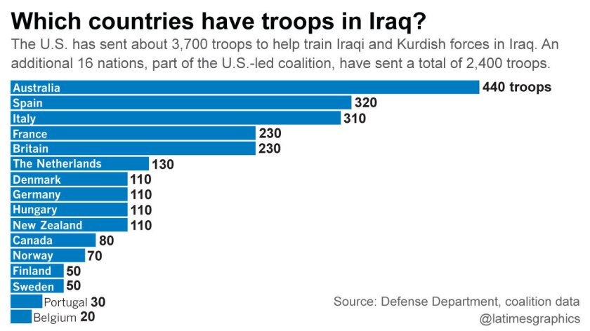 Which countries have troops in Iraq?